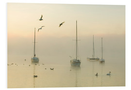 Forex  A misty morning over Lake Windermere Lake District