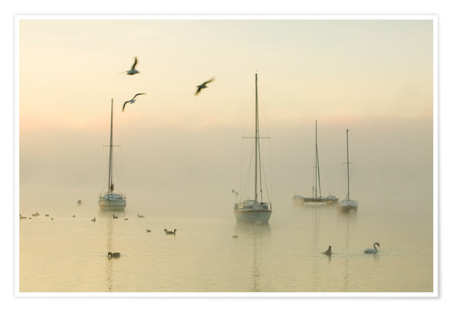Poster A misty morning over Lake Windermere Lake District