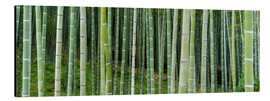 Tableau en aluminium  Green bamboo forest in Kyoto, Japan - Jan Christopher Becke