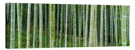 Tableau sur toile  Green bamboo forest in Kyoto, Japan - Jan Christopher Becke