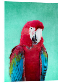 Tableau en verre acrylique  Tropical Macaw bird art poster - Alex Saberi