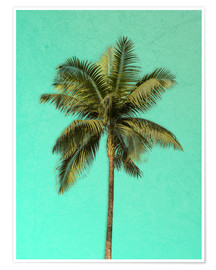 Poster  Palm tree - Alex Saberi