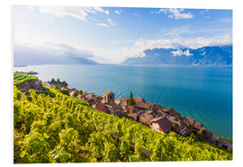 Tableau en PVC  St. Saphorin in the Lavaux region - Dieterich Fotografie
