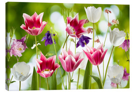 Toile  Tulips and columbine flowers