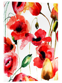 Tableau en verre acrylique  Poppy and Tulips flowers