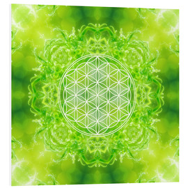 Forex  Flower of Life - Healing Power of Nature - Dolphins DreamDesign
