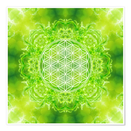 Dolphins DreamDesign - Flower of Life - Healing Power of Nature