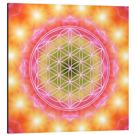 Alu-Dibond  Flower of Life - Heart Energy - Dolphins DreamDesign