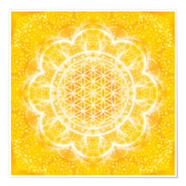 Poster  Flower of Life - Light Power - Dolphins DreamDesign