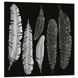 Alu-Dibond  Feathers in silver