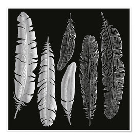 Poster  Feathers in silver