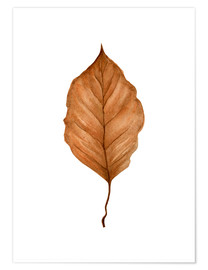 Poster Beech Leaf