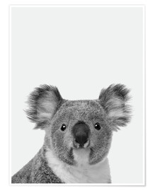 Poster  Adorable koala en noir et blanc - Finlay and Noa