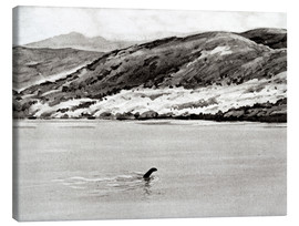 Toile  Nessi, the monster of Loch Ness