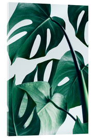 Verre acrylique  Monstera - Uma 83 Oranges