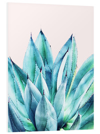 Forex  Agave Watercolor - Uma 83 Oranges