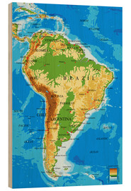 Bois  South America - Topographic Map