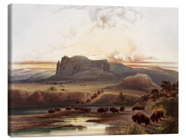 Toile  herd of buffaloes on the upper missouri - Karl Bodmer