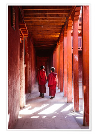 Poster  Two young monks in a monastery, Nepal - Matteo Colombo