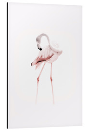Tableau en aluminium  The Flamingo - Jaysanstudio