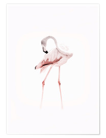 Poster  The Flamingo - Jaysanstudio