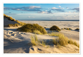 Poster  Landscape with dunes on the North Sea island Amrum - Rico Ködder
