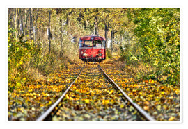 Harald Schön - Train drives away from the photographer