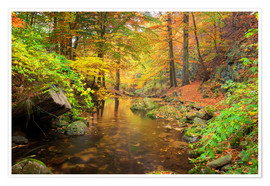 Poster Little brook in autumn forest