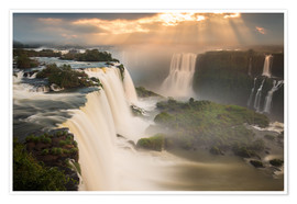 Poster  Iguazu falls waterfall at sunset. - Alex Saberi