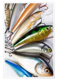 Poster Colorful fishing hooks
