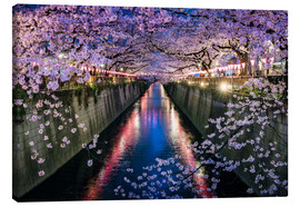 Tableau sur toile  Cherry Blossom Festival in Nakameguro, Tokyo, Japan - Jan Christopher Becke