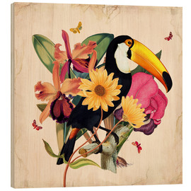Bois  Oh My Parrot XII - Mandy Reinmuth
