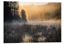 Tableau en PVC  Foggy morning on the lake - Christian Möhrle
