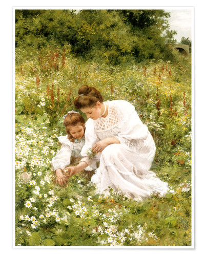 Poster When picking daisies