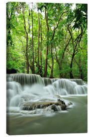 Toile  Waterfall in forest of Thailand