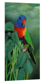 Tableau en PVC  colorful Rainbow lorikeet - Monica Schwarz