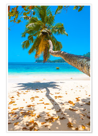 Poster Sea view with palm tree