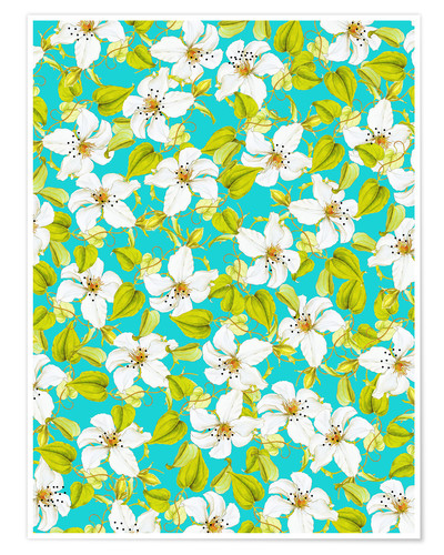 Poster White Florals