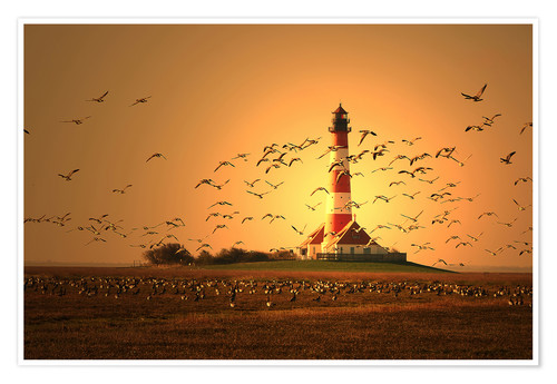 Poster Sunset at Westerhever
