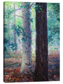 Tableau sur toile  Elm and pine - Jonathan Guy-Gladding