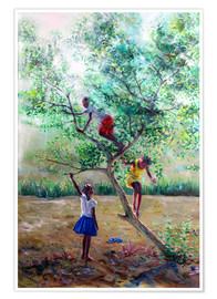 Poster  Guava tree III - Jonathan Guy-Gladding