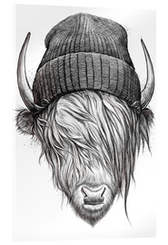 Nikita Korenkov - bull in a hat