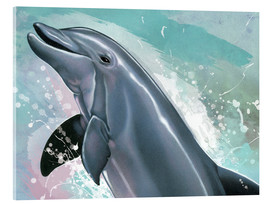 Verre acrylique  Bottlenose Dolphin  - Ashley Verkamp