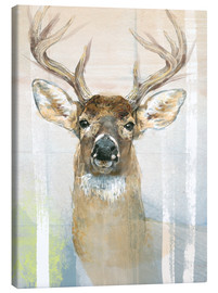Toile  Whitetailed Deer Surrounded By Birches - Ashley Verkamp