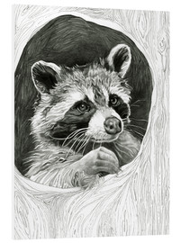 Forex  Raccoon In A Hollow Tree Sketch - Ashley Verkamp