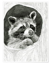 Poster Raccoon In A Hollow Tree Sketch