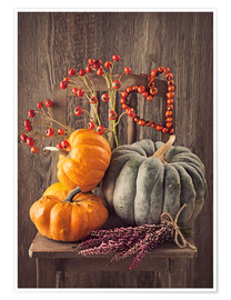 Poster  Still life with the pumpkins - Elena Schweitzer