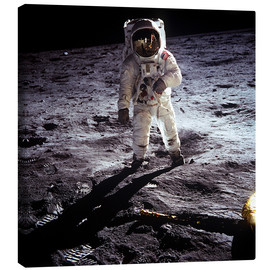 Toile  1st steps of human on Moon