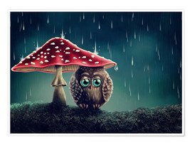 Poster  Owl in the rain - Elena Schweitzer
