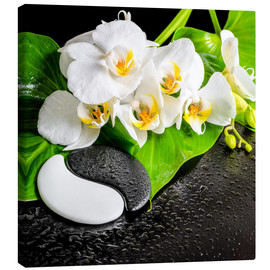 Toile  Spa arrangement with white orchid